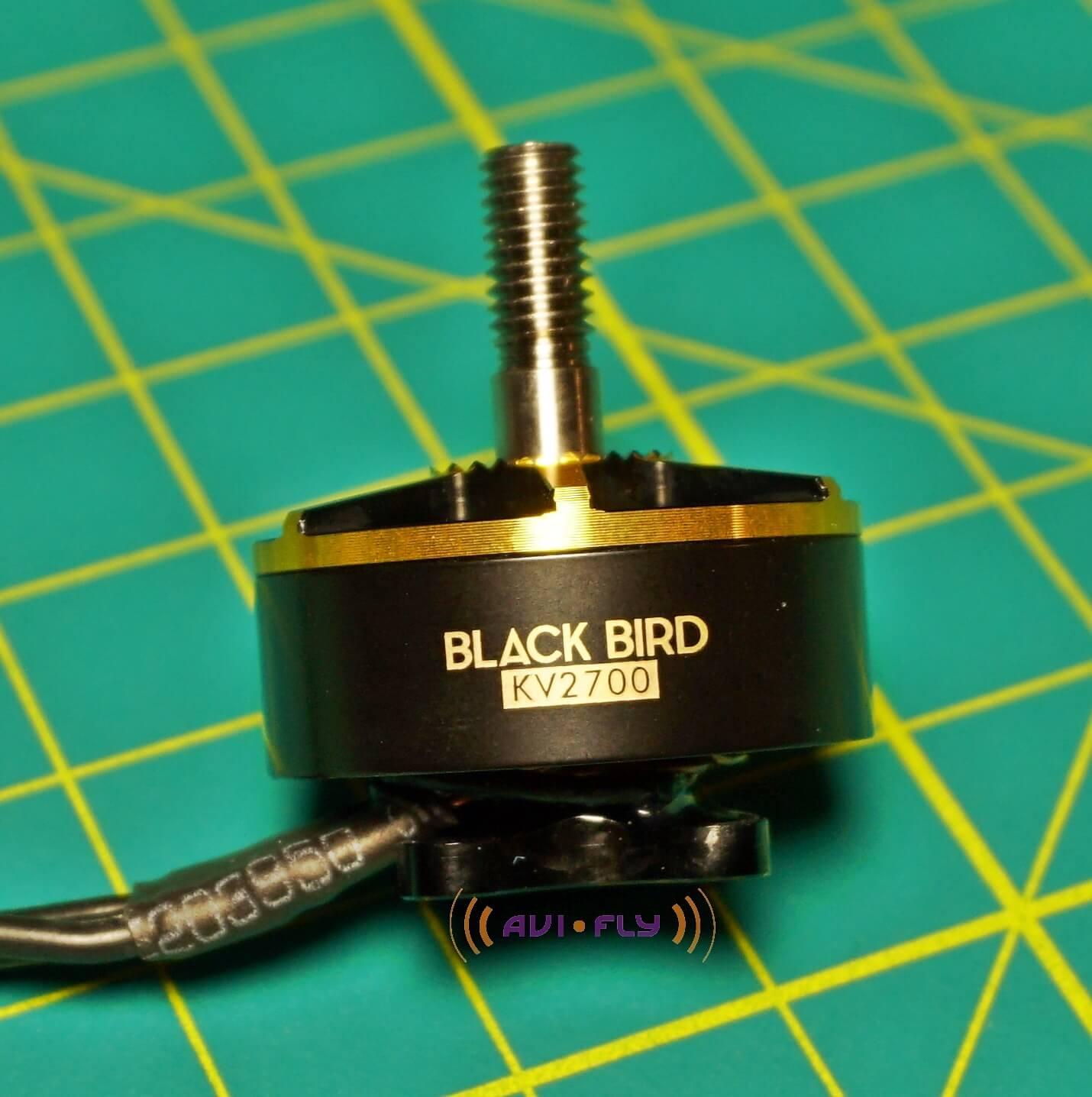T-Motor Black Bird kv2700