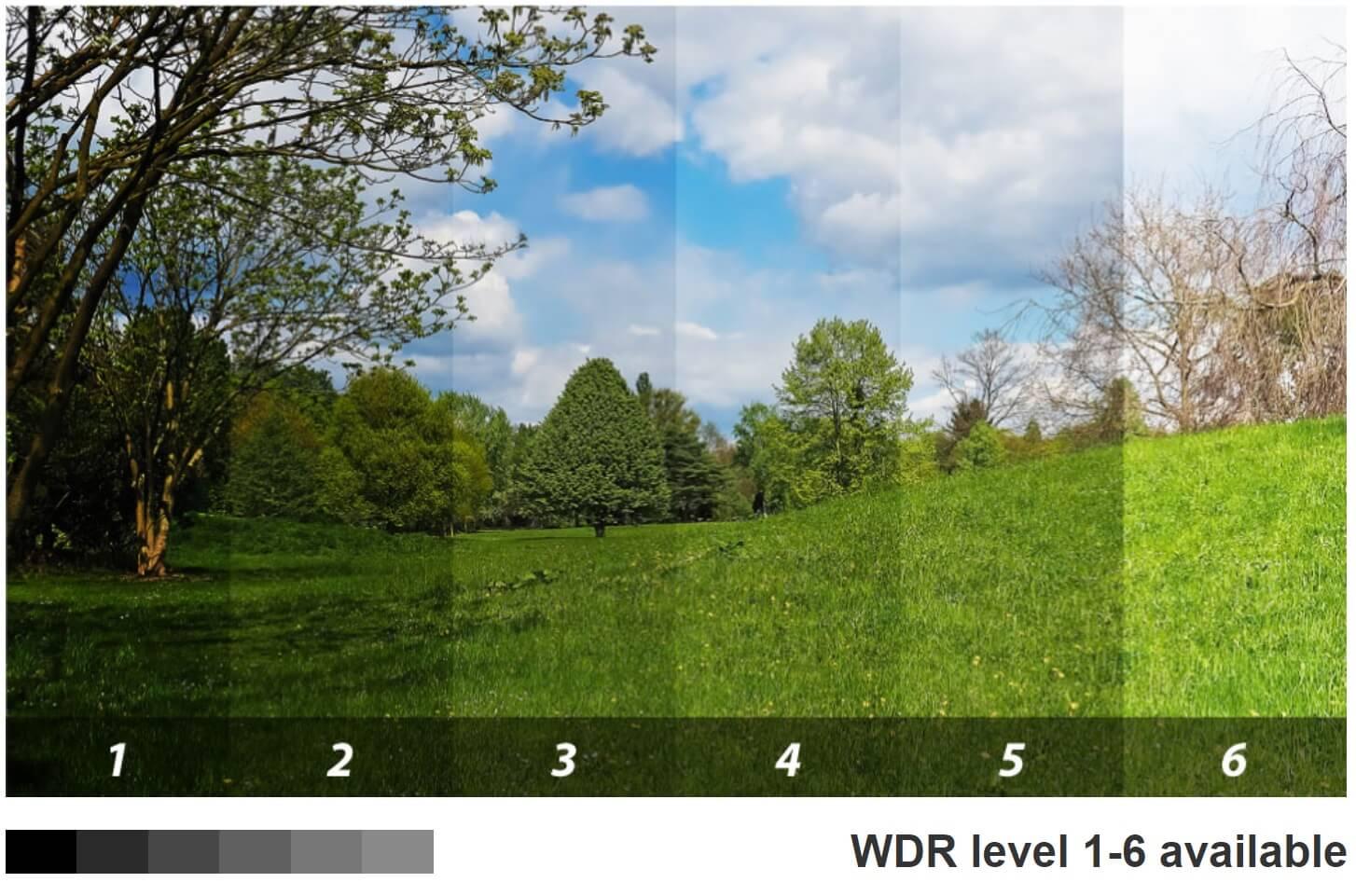 Global DWR 6 stopniowy